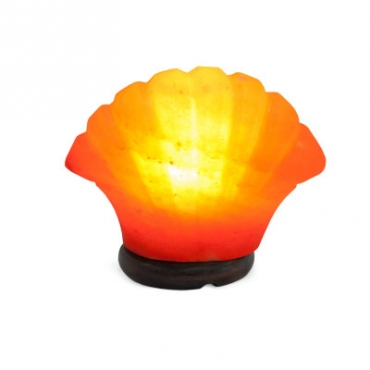 Соляной светильник STAY GOLD Ракушка